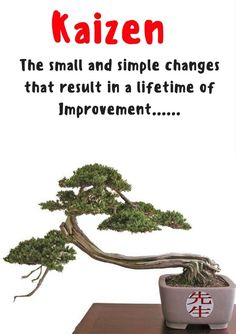 Incremental improvements daily lead to stunning results